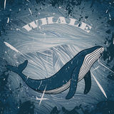 Vintage poster with whale on marine grunge background.