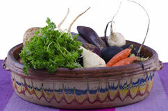 Vintage pot filled with various vegetables. Vintage pot filled with carrots, black and white raddish. potatoes, parsnip Stock Image
