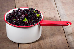 Vintage pot with huckleberries Stock Photo