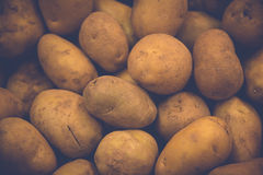 Vintage potato texture shallow style Stock Photography