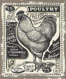 Vintage Poultry and Eggs Advertising Page Stock Image