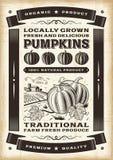 Vintage pumpkin harvest poster Stock Image
