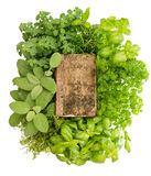 Vintage recipe book with variety fresh herbs. Over white background Royalty Free Stock Photography