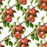 Vintage Red apples seamless pattern. Vintage styled Red apples seamless pattern. Raster illustration. Artistic natural food background. Apple branches Royalty Free Illustration
