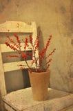 Vintage red berries Royalty Free Stock Image