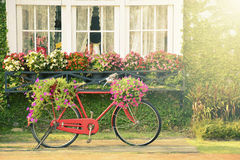 Vintage red bicycle with flowers in the garden. Stock Photos