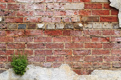 Brick and Stucco Wall Stock Photography