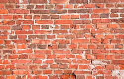 Vintage red brick wall texture Stock Image