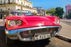 Vintage red Ford Thunderbird convertible car parked in Old Havana Stock Photography