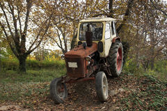 Vintage red tractor Stock Photos