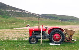 Vintage red tractor in a field in UK Stock Image