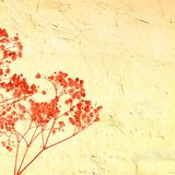 Vintage red wild herbs on cracked background Stock Photos