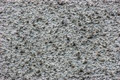 Vintage resistido envelhecido velho macro close up horizontal detalhado áspero rústico do fundo do detalhe de Grey Wall Stucco Te imagem de stock