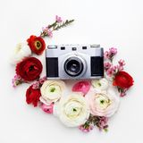 Vintage retro camera, red and beige ranunculus flower buds pattern on white background. Flat lay, top view decorated. Vintage retro camera, red and beige Royalty Free Stock Images