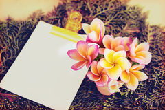 Vintage retro colour style flowers with blank paper note pad on Stock Photography