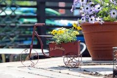 Vintage retro flower pot Royalty Free Stock Photo