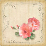 Vintage retro flowers roses postcard border frame Stock Images