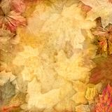 Vintage retro leafy background Stock Photography