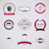 Vintage Retro Logotypes and insignias set. Vector design elements,  logos, identity, badges, business signs, apparel, ribbons, stickers. For organic food and Royalty Free Stock Photo