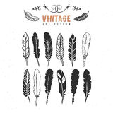 Vintage retro old nib pen feather ink collection. Hand drawn vector illustrations. Vol.11 Royalty Free Stock Image