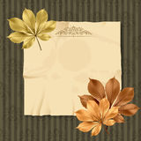 Vintage and retro old paper card with leaves Royalty Free Stock Photography