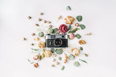 Vintage retro photo camera, beige roses and green leaves Royalty Free Stock Photos
