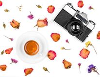 Vintage retro photo camera, dried roses and coffee cup isolated on white background. Flat lay. Top view Royalty Free Stock Photography