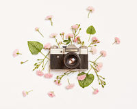 Vintage retro photo camera, pink roses and Brunnera leaves Royalty Free Stock Image
