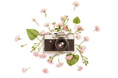 Vintage retro photo camera, pink roses the fairy and Brunnera gr. Een leaves on white background. flat lay, top view Stock Photos