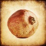 Vintage retro pomegranate image background. Royalty Free Stock Image