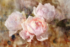 Vintage retro roses Stock Photo