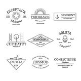Vintage and retro style logos and labels set Royalty Free Stock Photography