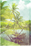 Vintage retro style photo of tropical beach lagoon with coconut palm trees Royalty Free Stock Photos