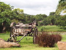 Vintage retro style used wood metal cart standing on green grass garden Stock Images