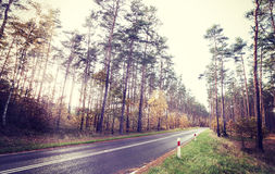 Vintage retro styled picture of a road in forest Stock Photography