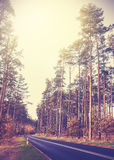 Vintage retro styled picture of a road in forest Royalty Free Stock Photos