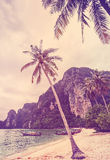 Vintage retro stylized tropical beach with palm trees Stock Images