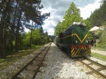 Vintage retro train on the narrow gauge railway in Serbia.  stock photos
