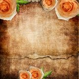 Vintage romantic background Royalty Free Stock Photos
