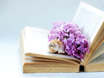 Vintage romantic background with old book, lilac flower, and little seashell Royalty Free Stock Images