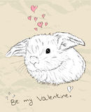 Vintage romantic card with cute animal. Vector illustration EPS8 Royalty Free Stock Photography