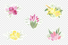 Vintage romantic vector of fashionable bouquets of flowers. Royalty Free Stock Photos