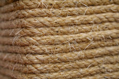 Vintage rope. Closeup. Shallow Depth of Field Stock Image