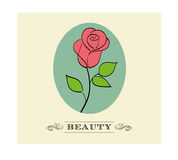 Vintage Rosa Foto de Stock