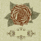 Vintage rose background. Vector in retro style. Vintage rose background. Vector illustration in retro style Royalty Free Stock Images