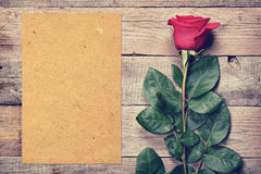 Vintage rose and blank paper Royalty Free Stock Image