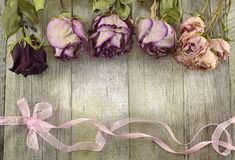Vintage rose border on wood Royalty Free Stock Images