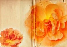 Vintage Rose Collage Antique Book amarilla Fotos de archivo