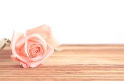 Vintage Rose flower. On wood table on white background Stock Image