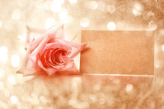 Vintage rose with message card Stock Photo
